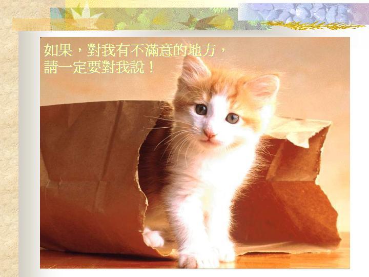 壁纸 动物 猫 猫咪 小猫 桌面 720_540