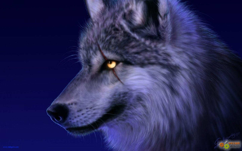 狼国成人色_天上飞水里游的动物(食饭的动物)是什么生肖