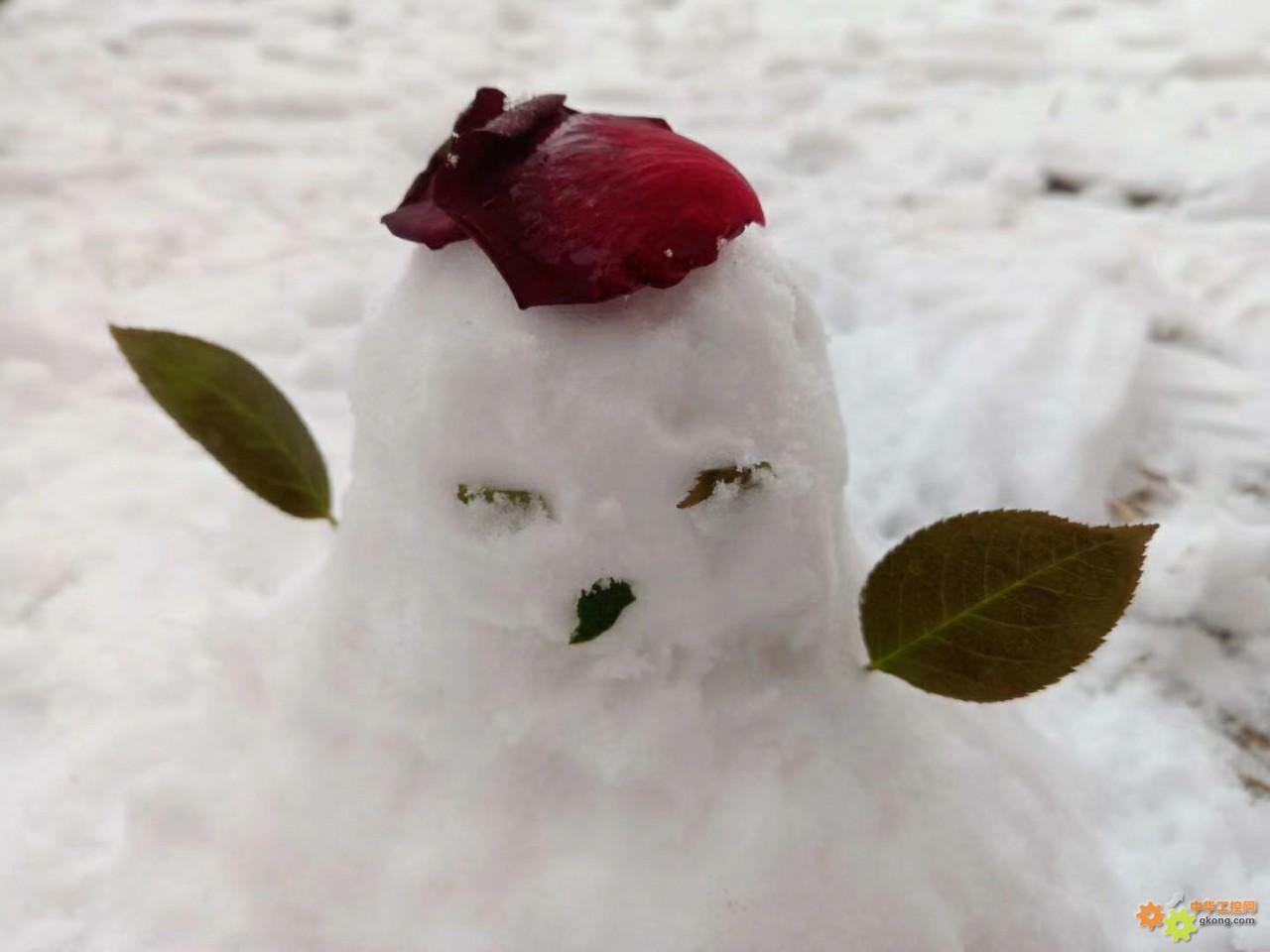 好雪知时节