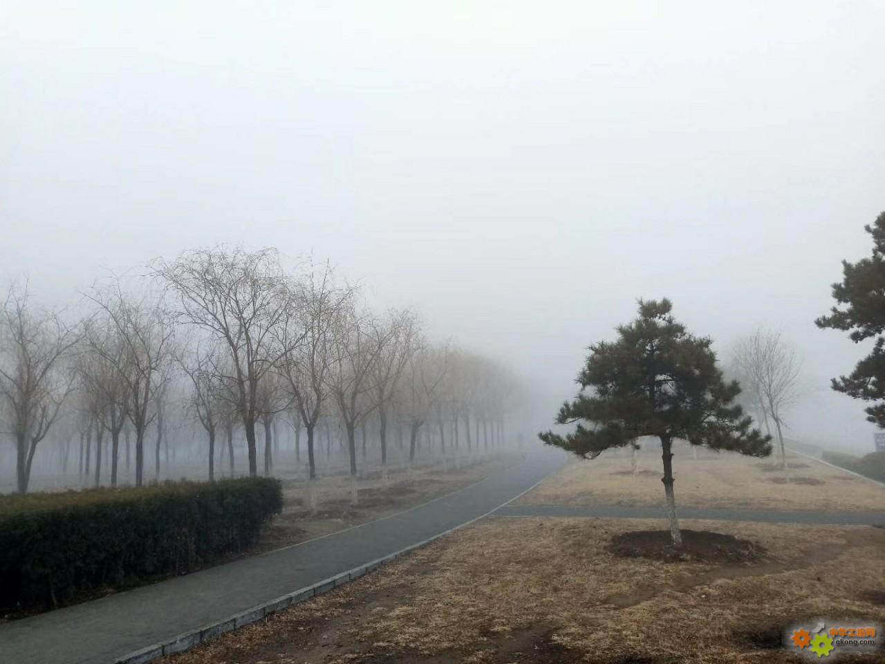 雾都下的清晨