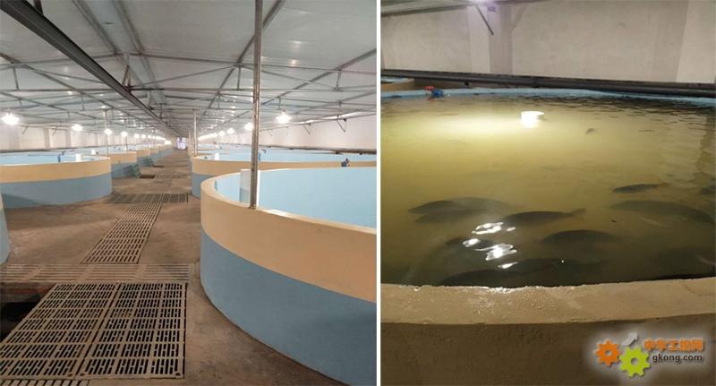 海为PLC/HMI/云/手机APP在现代水产农业养殖上的应用